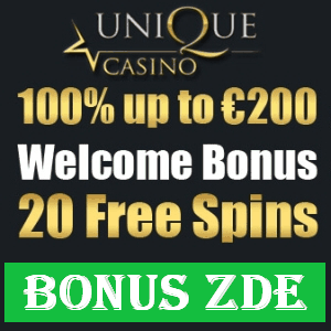 Výdělek Unique casino